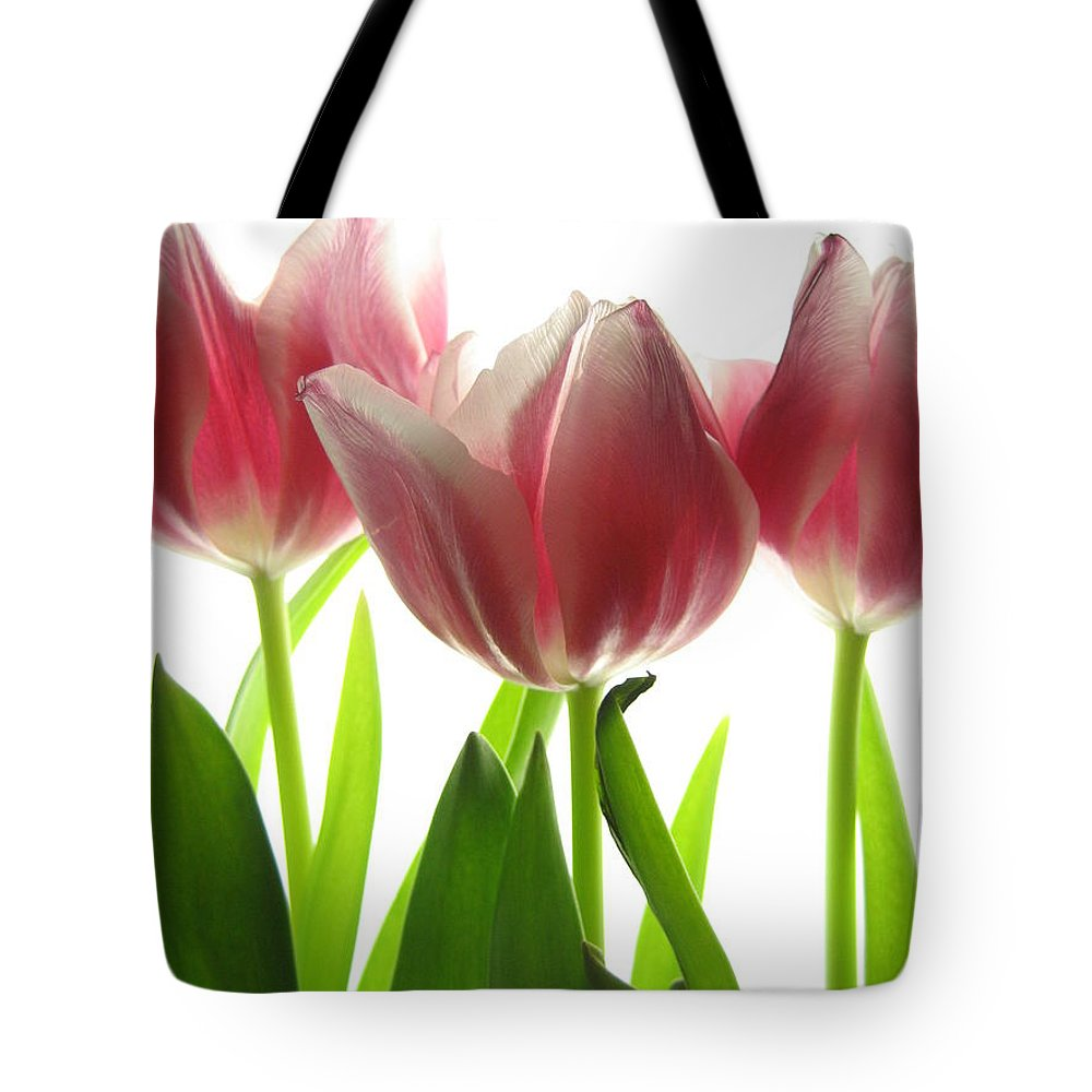 Tulip Tote Bag featuring the photograph Pink Tulips by Jane Linders