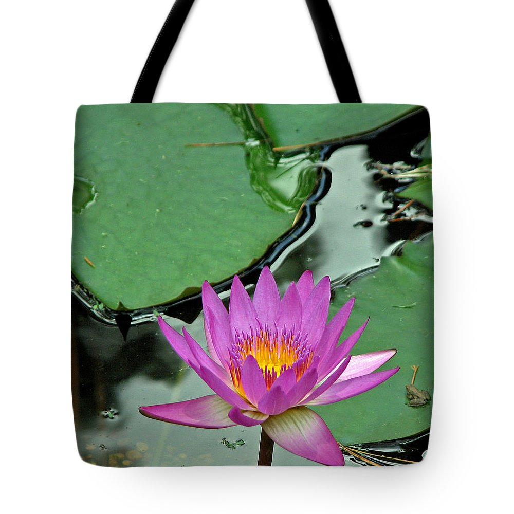 Amphibian Tote Bag featuring the photograph Pink Water Lily by Judy Vincent