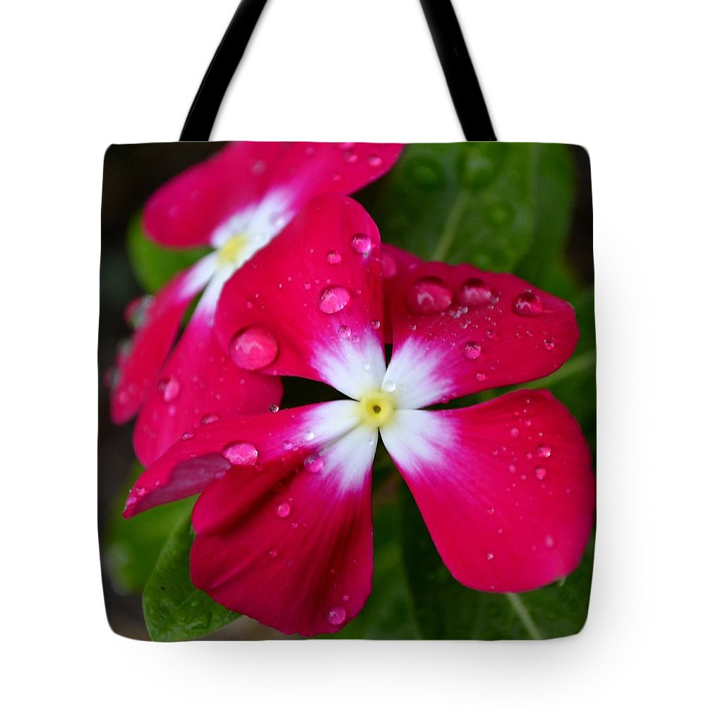 Flower Tote Bag featuring the photograph Pinkaful by Melanie Moraga