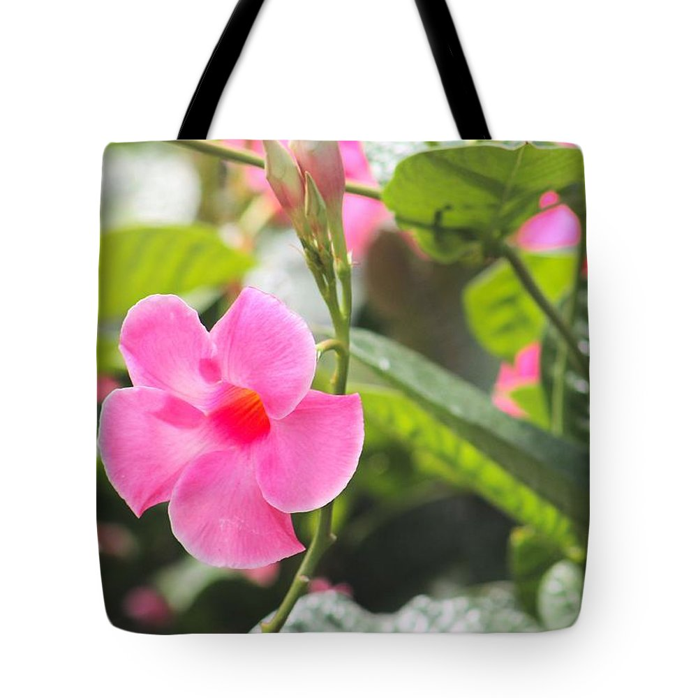 Pink Flowers Tote Bag featuring the photograph Pinks # 2 by G Berry