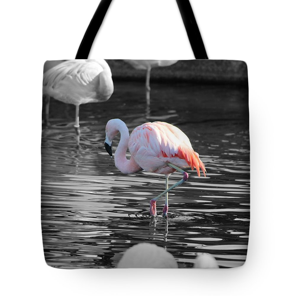 Palm Desert California Tote Bag featuring the photograph Pinky by Colleen Cornelius