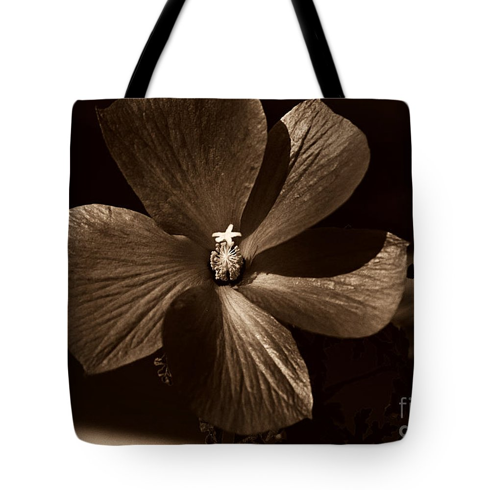 Clay Tote Bag featuring the photograph Pinwheel by Clayton Bruster