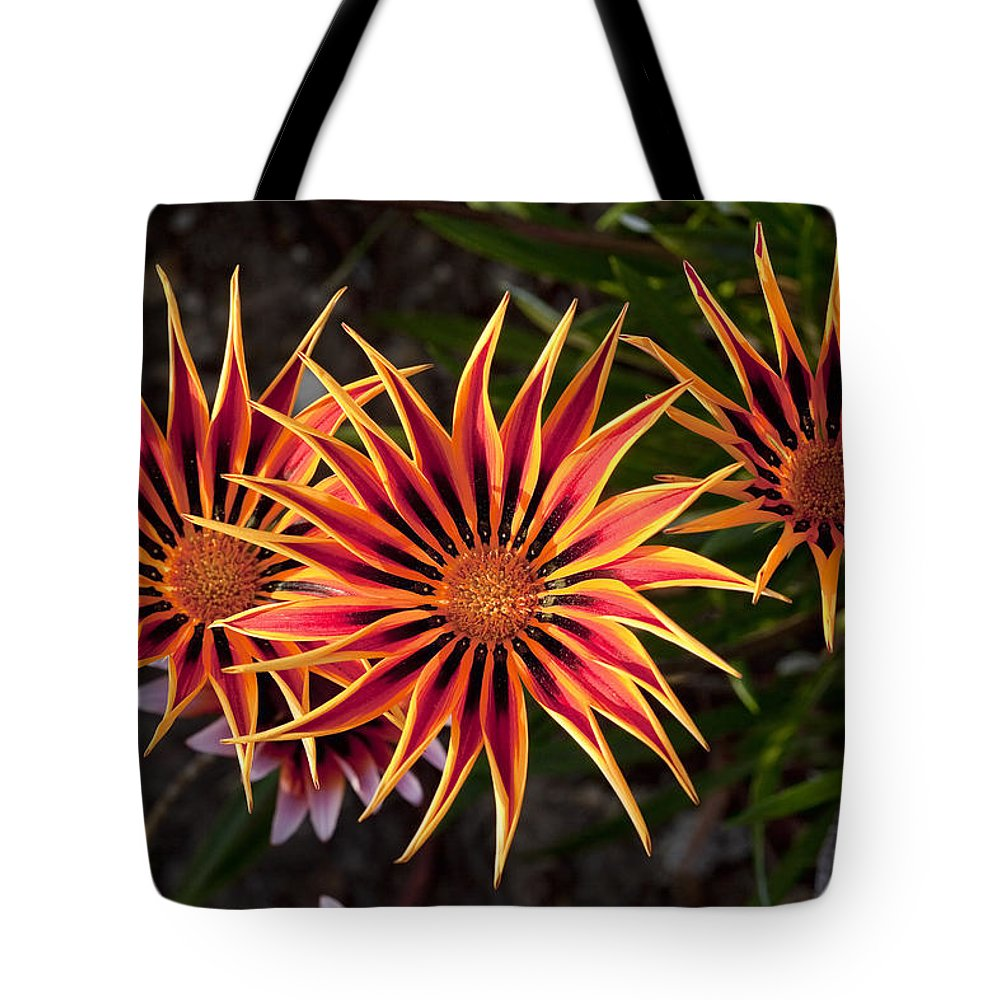 Flowers Tote Bag featuring the photograph Pinwheels by Kelley King