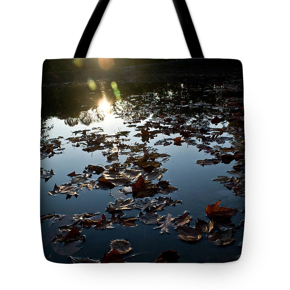Placid Tote Bag featuring the photograph Placid by Douglas Barnett