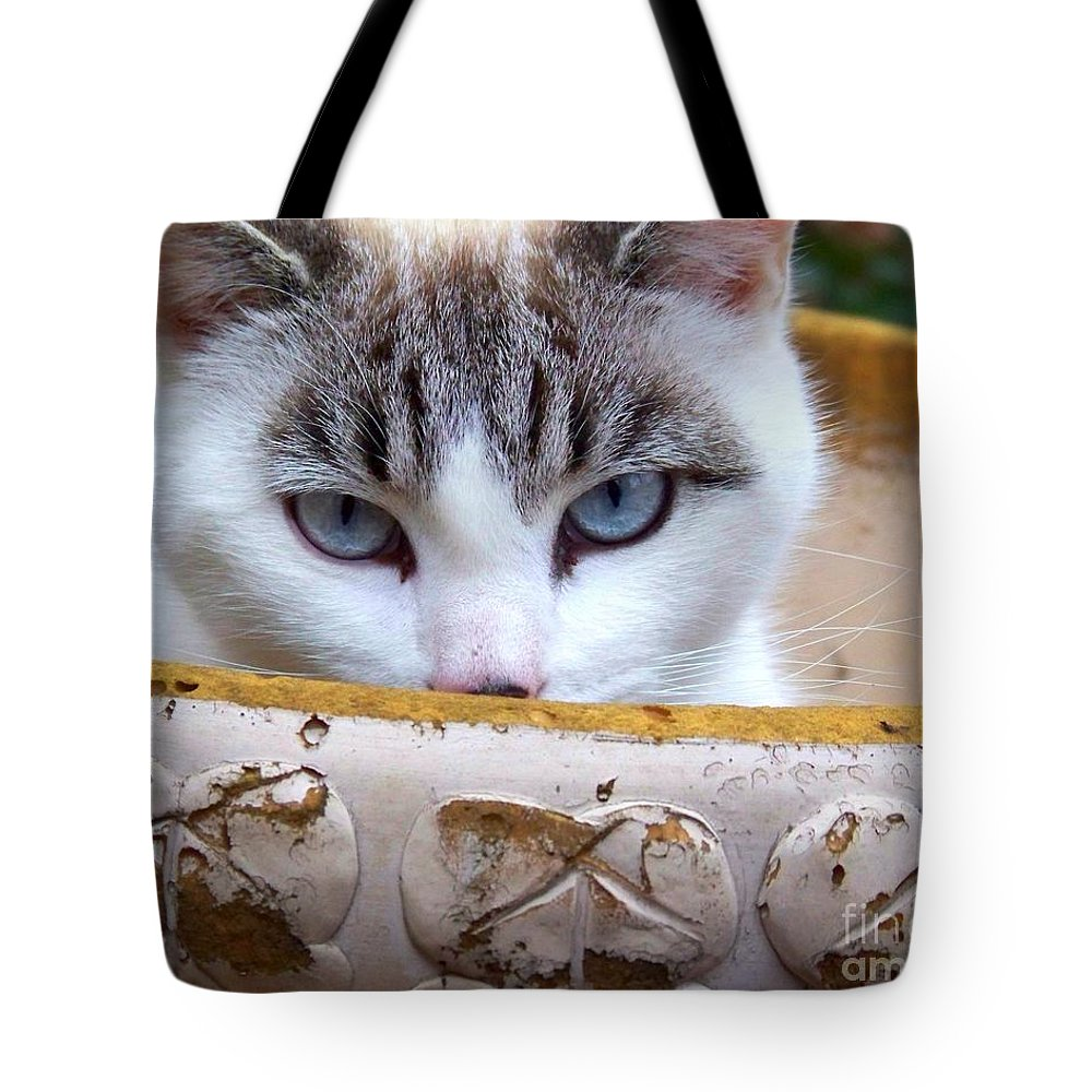 Cat Tote Bag featuring the photograph Planted by Jai Johnson
