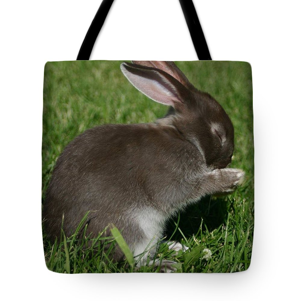 Bunny Tote Bag featuring the photograph Please Carrots For Dinner by Melissa Haney