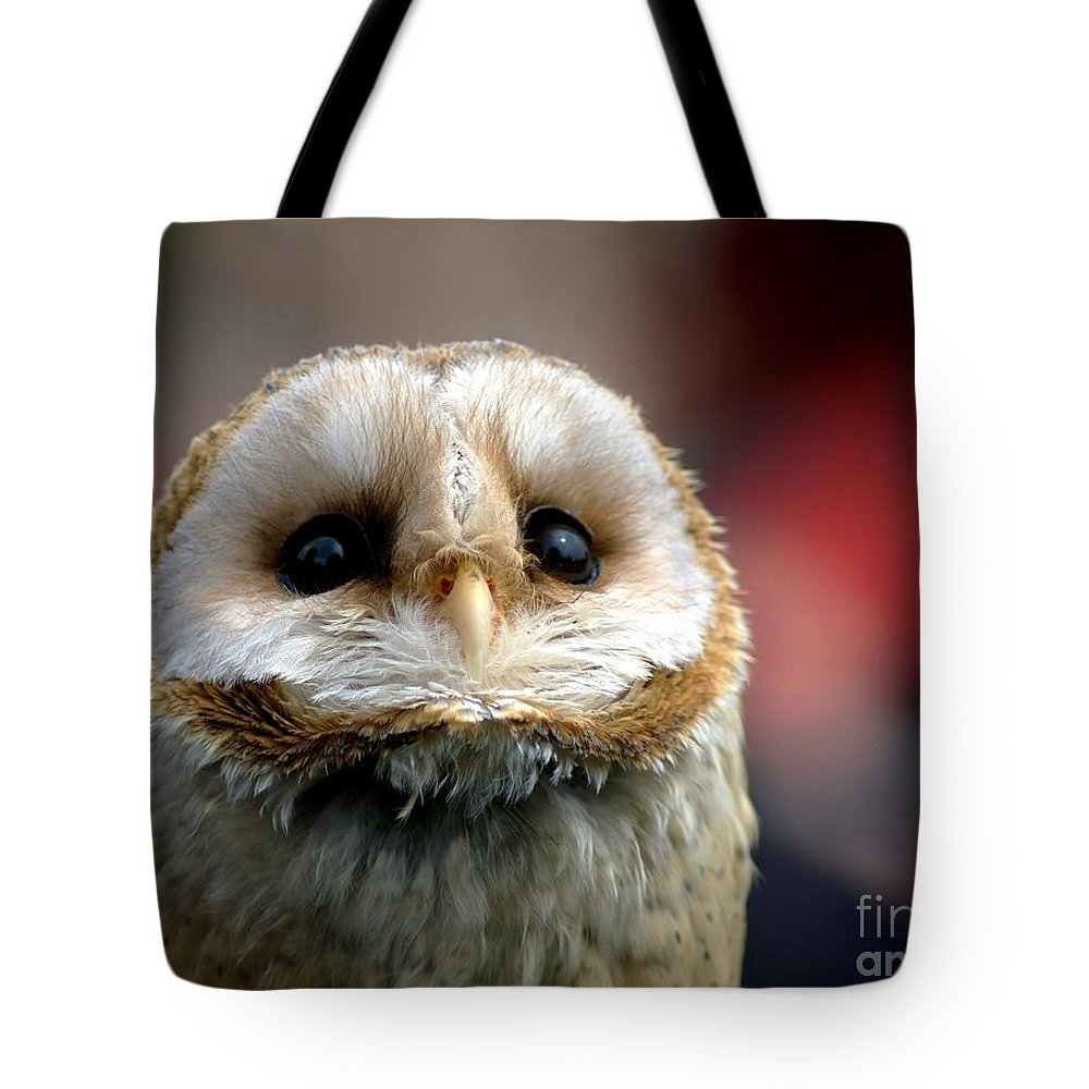 Wildlife Tote Bag featuring the photograph Please by Jacky Gerritsen