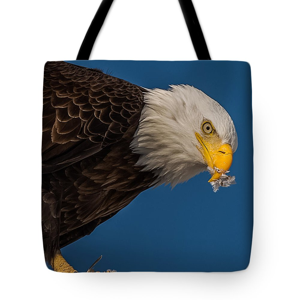 American Bald Eagle Tote Bag featuring the photograph Plucking Feather's From Prey by Yeates Photography
