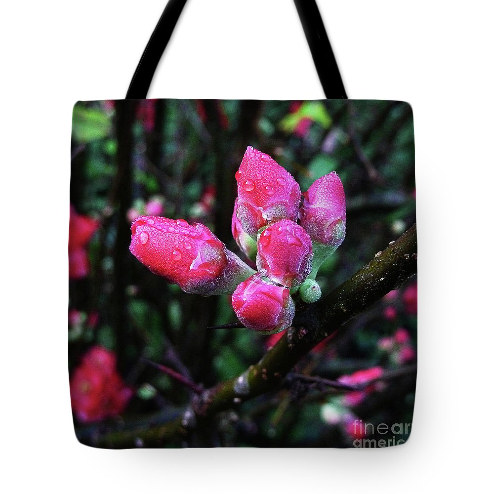 Plum Tote Bag featuring the photograph Plum Blossom 1 by Xueling Zou