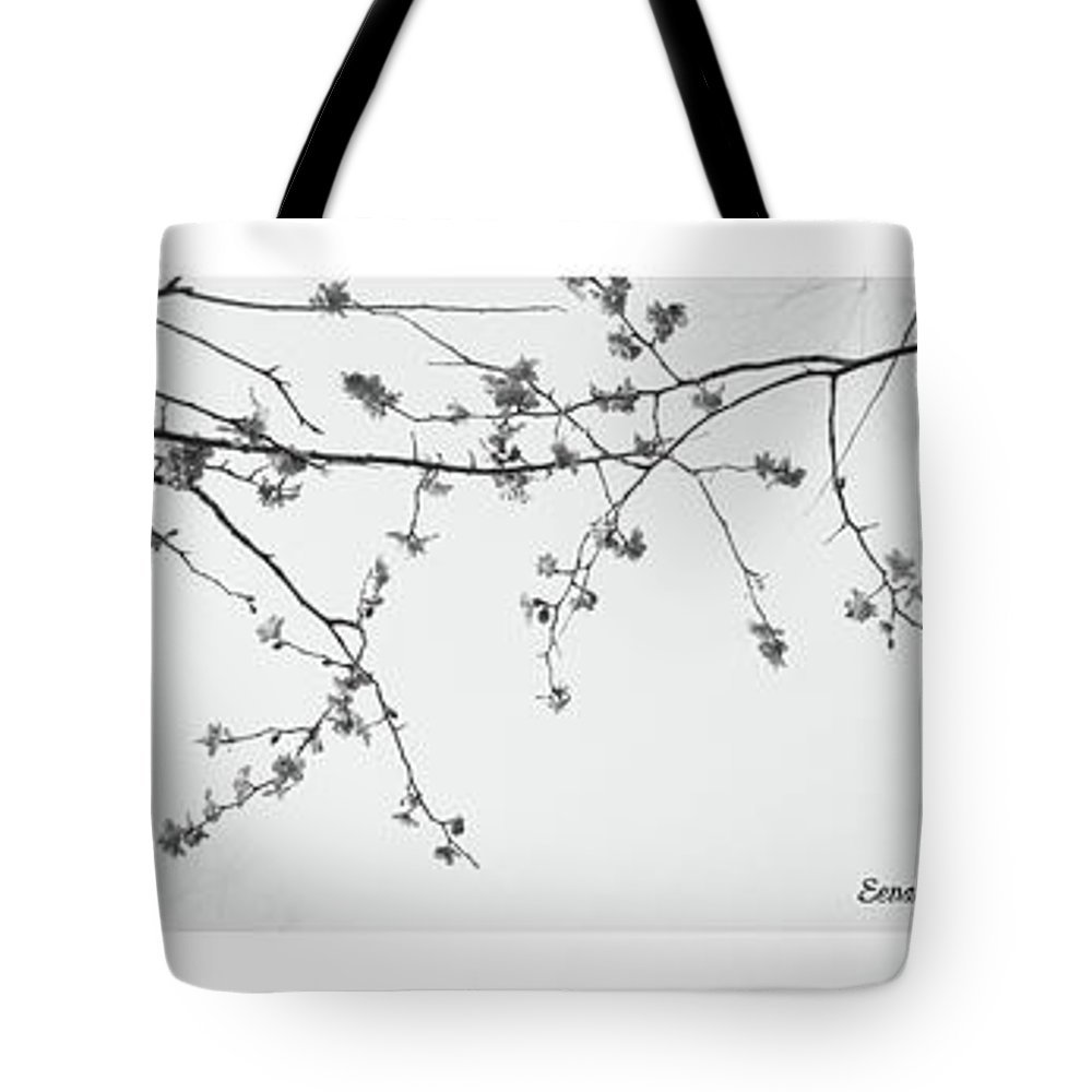 Plum Tote Bag featuring the photograph Plum Blossoms by Eena Bo