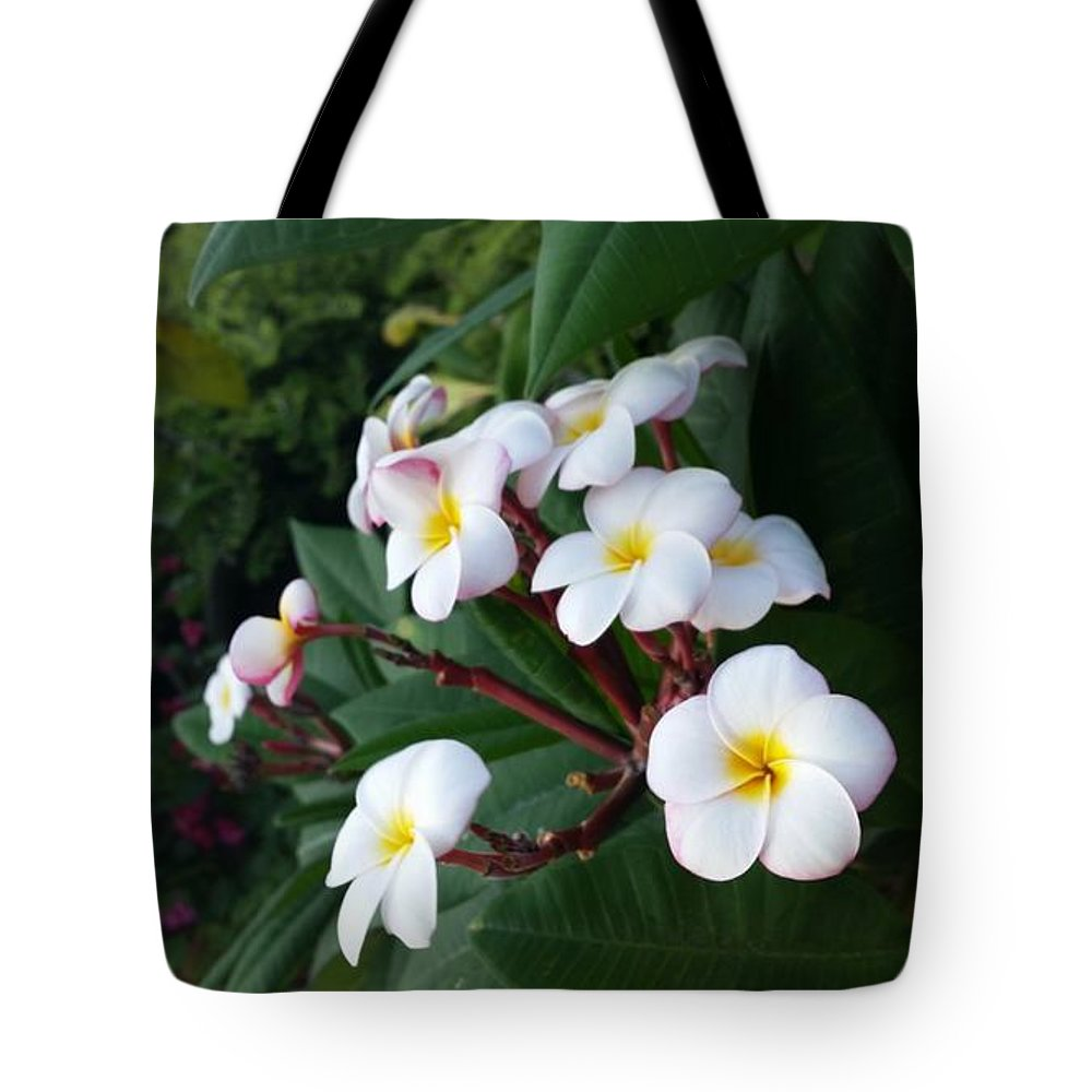 Frangipani Tote Bag featuring the photograph Plumeria by Nat S
