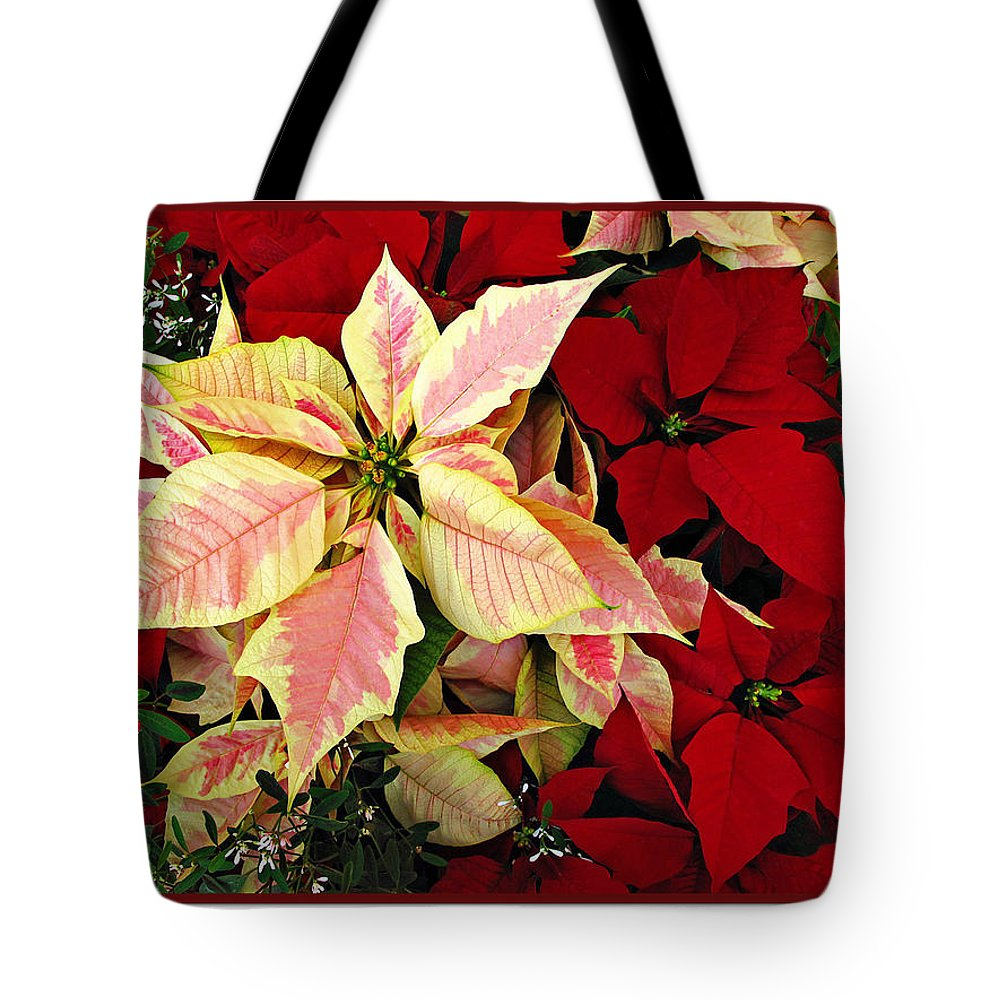 Poinsetta Tote Bag featuring the photograph Poinsetta Greetings by Joan Minchak