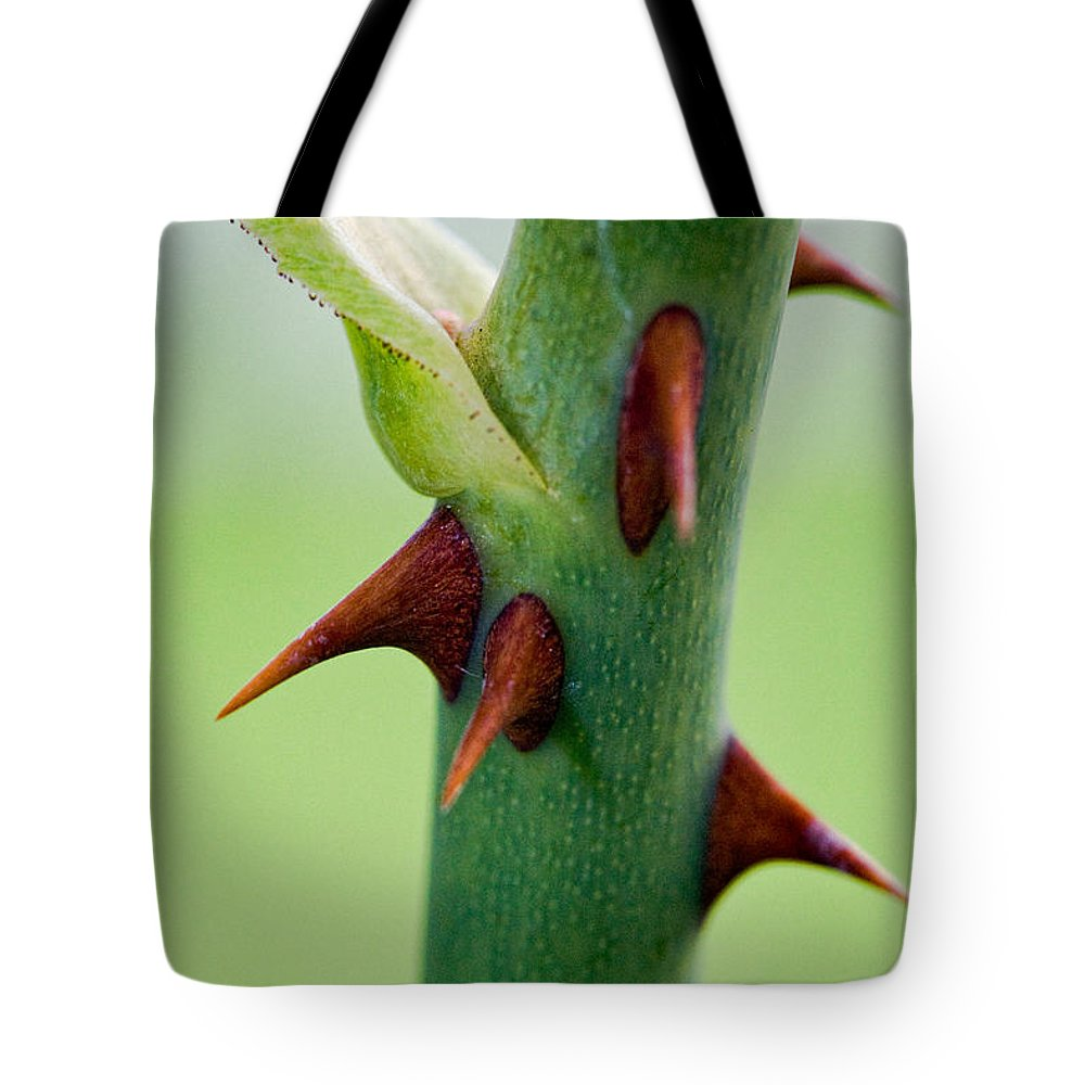 Thorns Tote Bag featuring the photograph Pointed Personality by Christopher Holmes