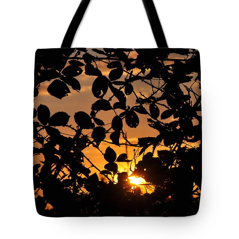 Sunset Tote Bag featuring the photograph Pointed Shadow by Brittany Horton