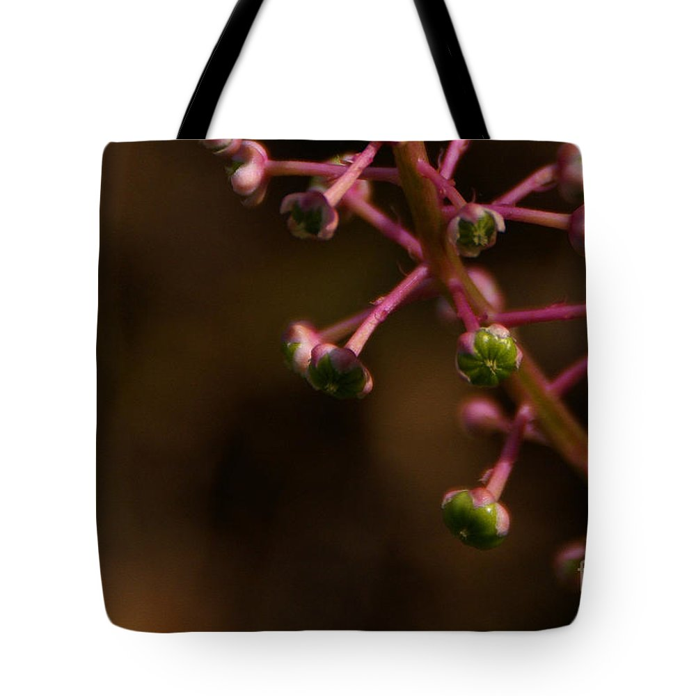 Pokeweed Tote Bag featuring the photograph Pokeweed Emerges by Linda Shafer
