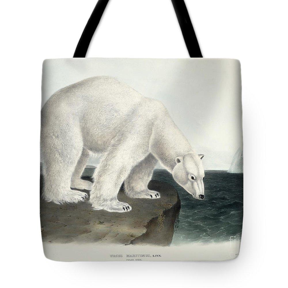 Arctic Tote Bag featuring the painting Polar Bear by John James Audubon