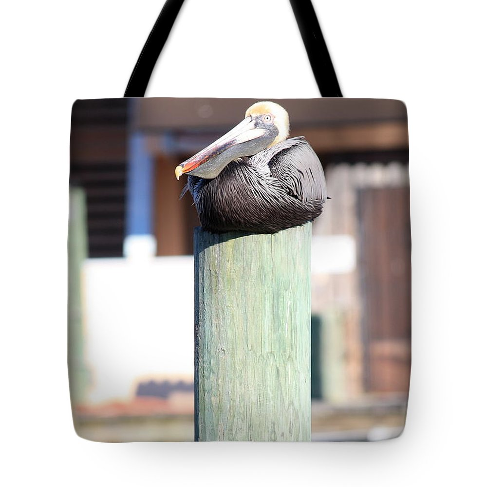 Wildlife Tote Bag featuring the photograph Pole Top Pelican by Carol Groenen