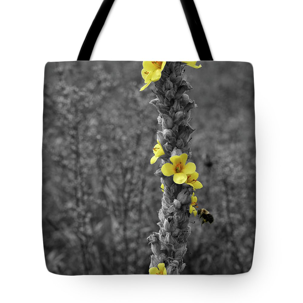 Color Desaturation Tote Bag featuring the photograph Pollen Buzz by Dylan Punke