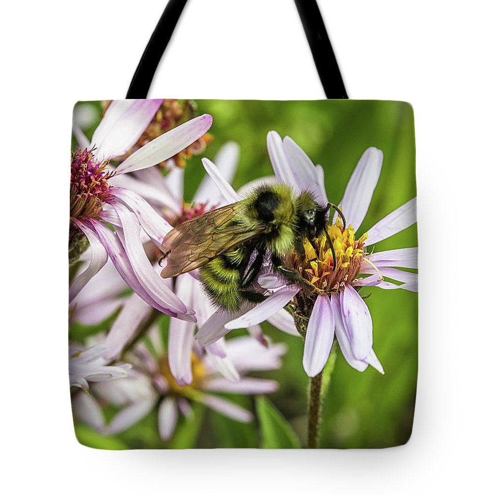 Alaska Tote Bag featuring the photograph Pollen Gathering by Corinna Gregory