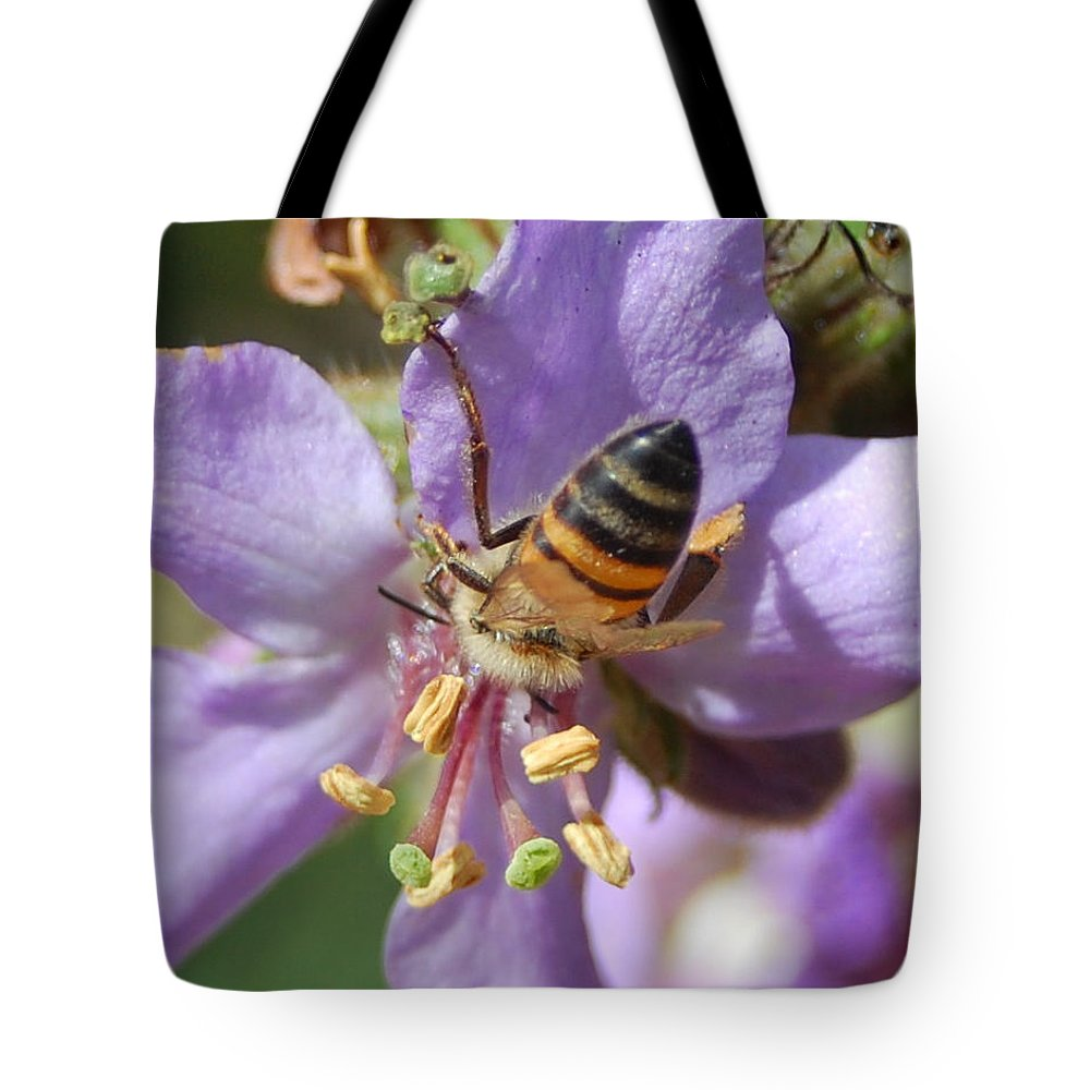 Bees Tote Bag featuring the photograph Pollinating 4 by Amy Fose