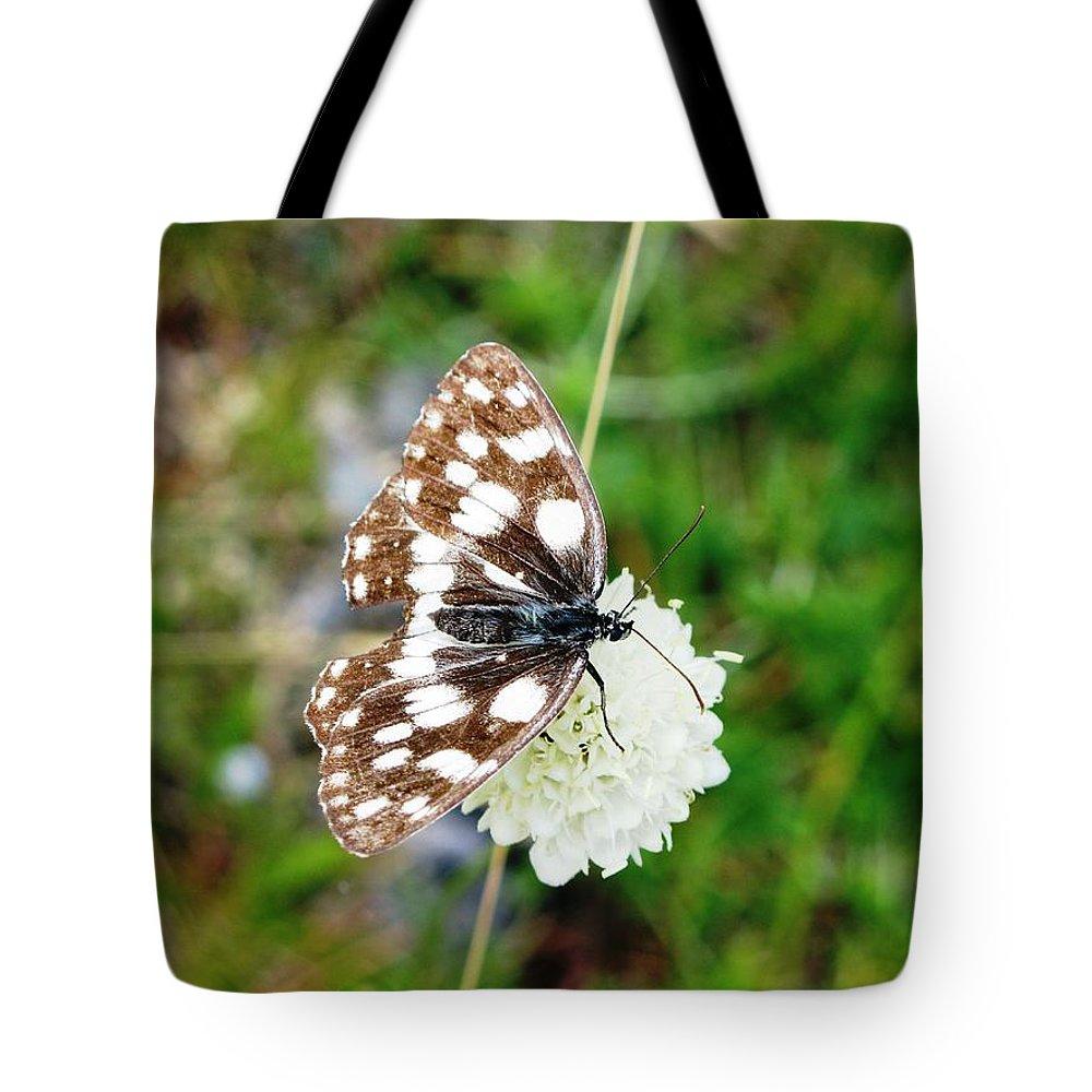 Melanargia Galatheabutterfly Tote Bag featuring the photograph Melanargia Galathea by Andonis Katanos