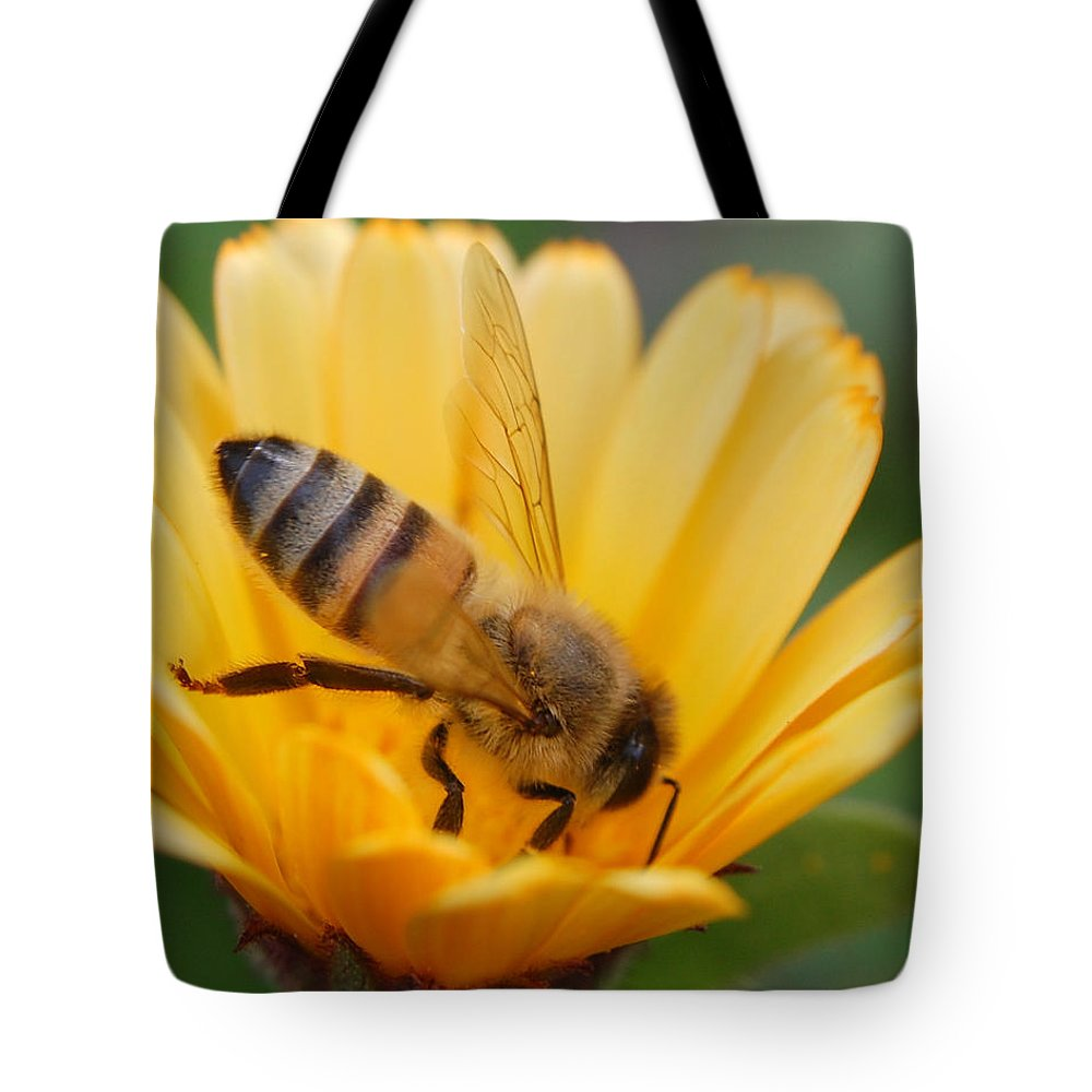 Bee Tote Bag featuring the photograph Pollination 2 by Amy Fose