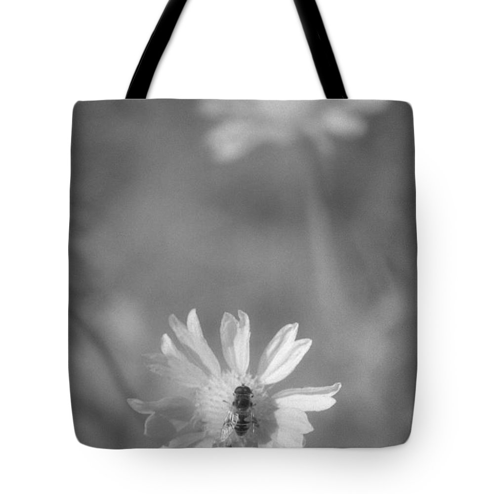Pollinate Tote Bag featuring the photograph Pollination by Richard Rizzo