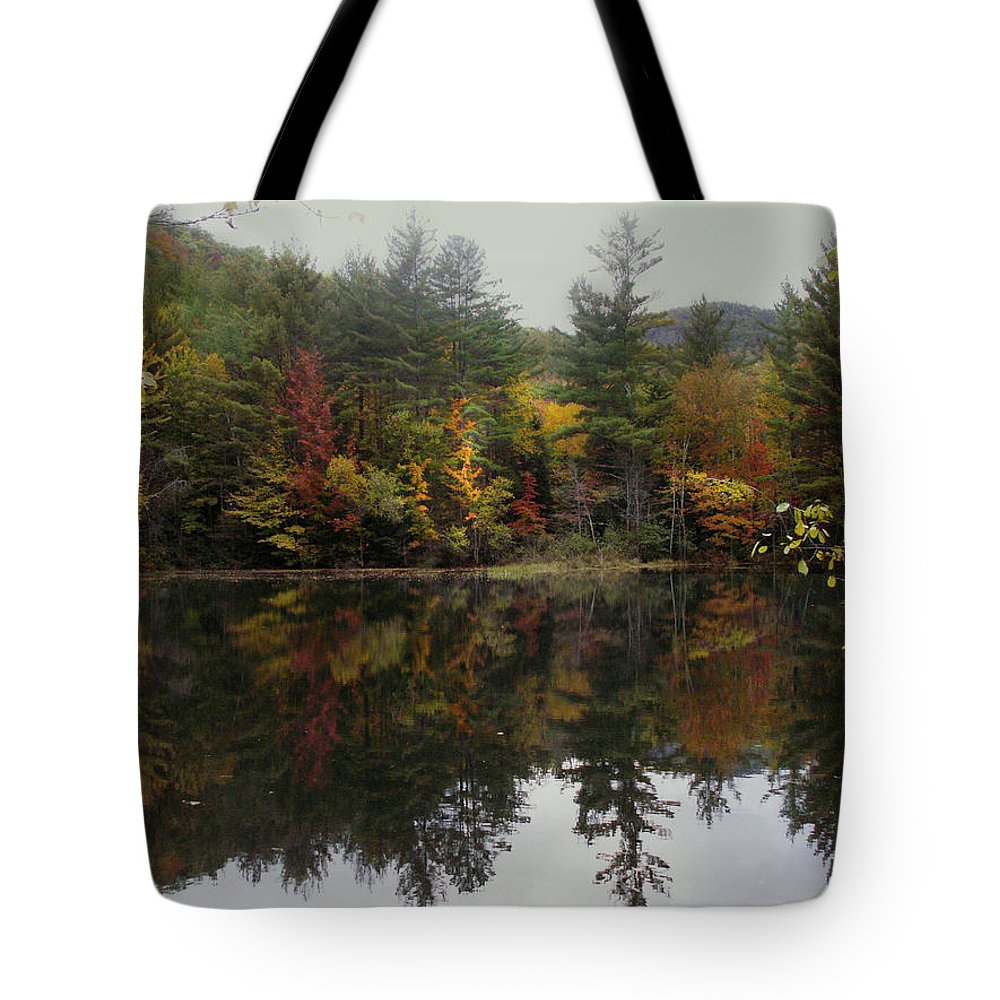 Landscape Tote Bag featuring the photograph Pond In Jackson by Nancy Griswold