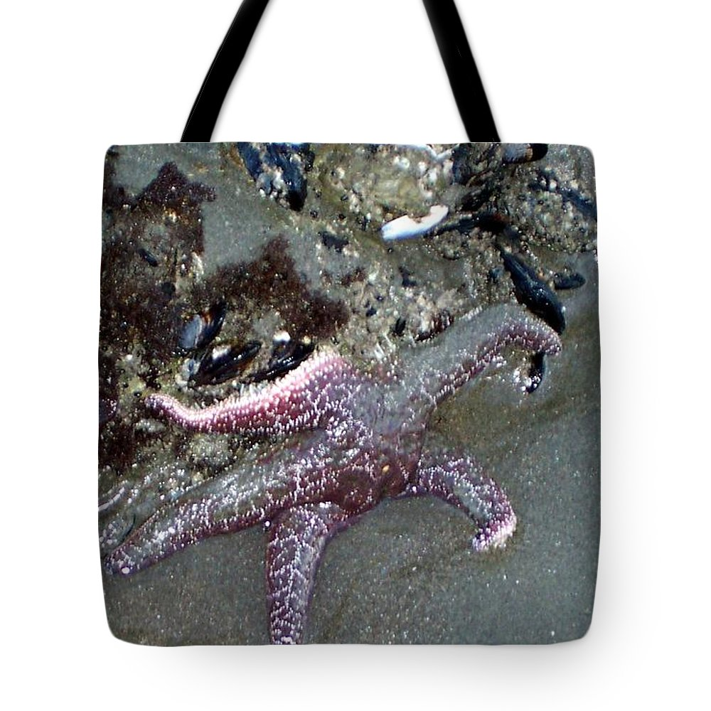 Starfish Tote Bag featuring the photograph Poor Little Starfish by Elizabeth Klecker