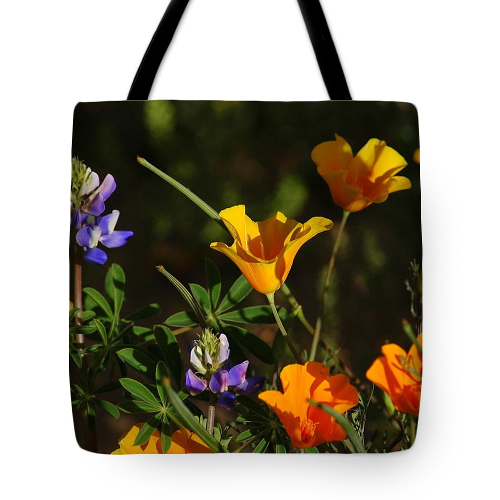 Desert Tote Bag featuring the photograph Poppies And Bluebells by Teresa Stallings
