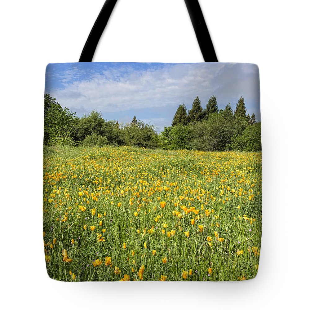 California Tote Bag featuring the photograph Poppies Forever by Jim Thompson