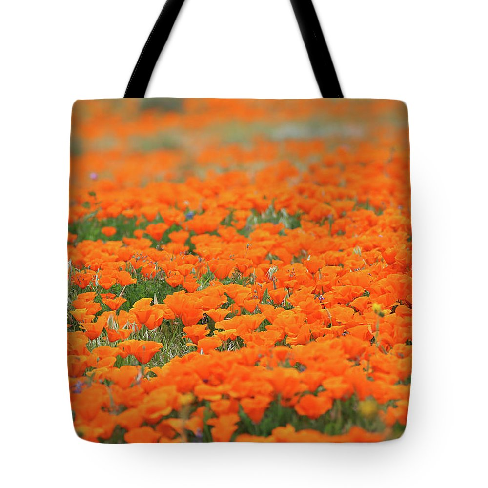 California Tote Bag featuring the photograph Poppy Field by Erin Donalson