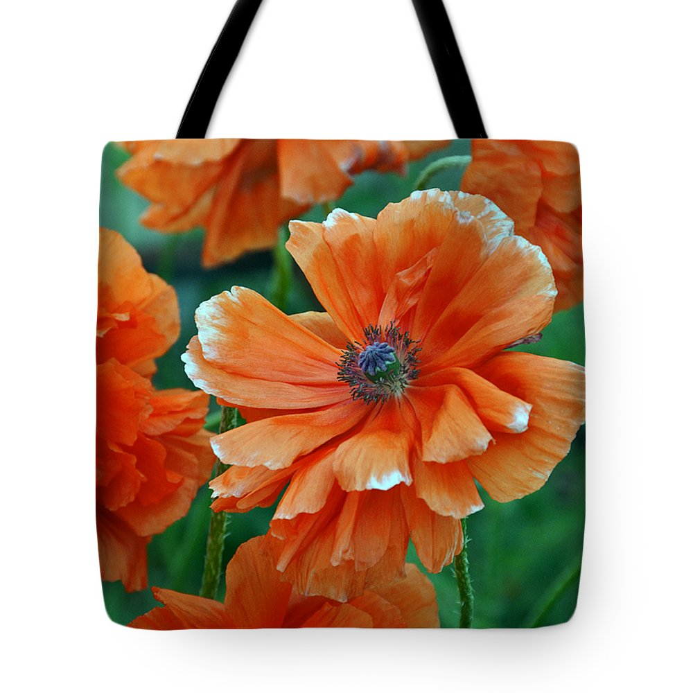 Papaver Somniferum. Opium Tote Bag featuring the photograph Poppy Fields by Angelina Vick
