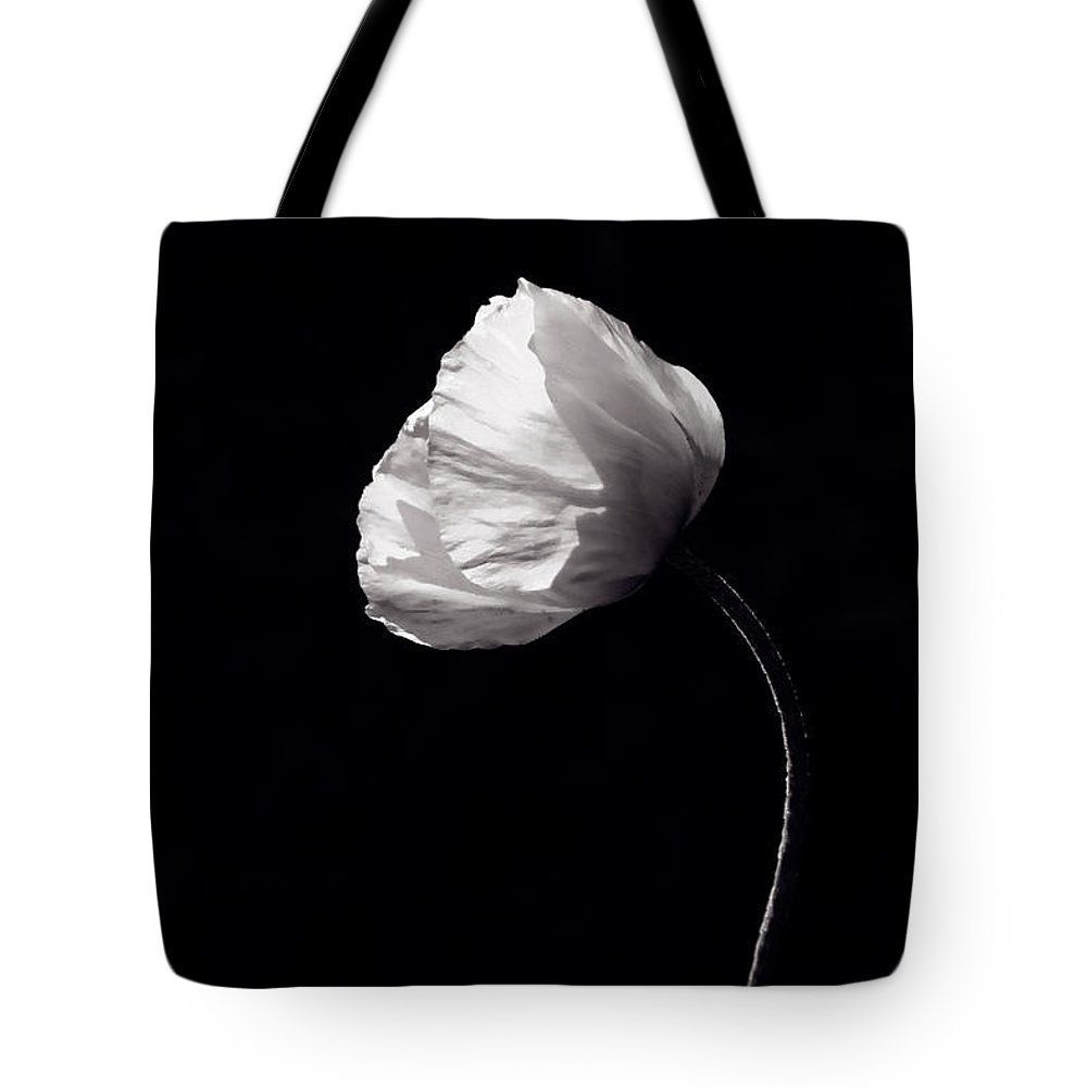 Plant Tote Bag featuring the photograph Poppy In Sunlight by Lise-Lotte Larsson