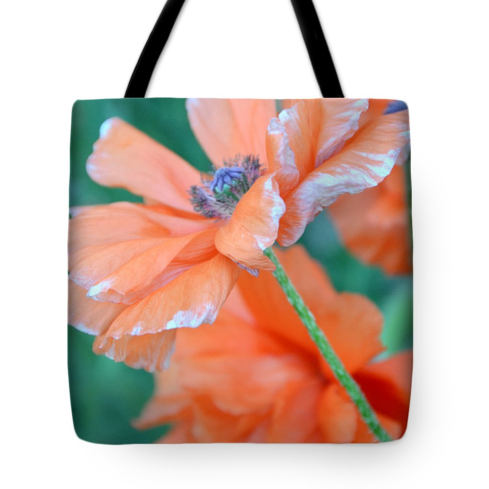 Papaver Somniferum. Opium Tote Bag featuring the photograph Poppy Passion by Angelina Vick