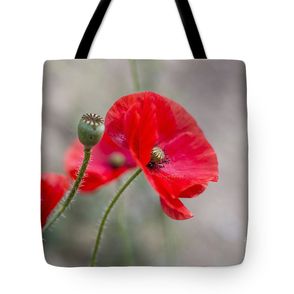Poppy Tote Bag featuring the photograph Poppys by Sebastien Coell