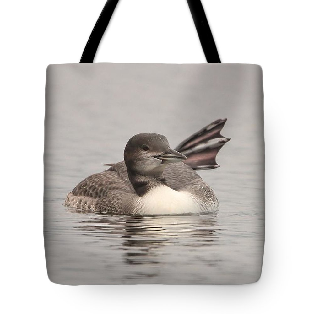 Common Loon Tote Bag featuring the photograph Portrait In Grey by Teresa McGill