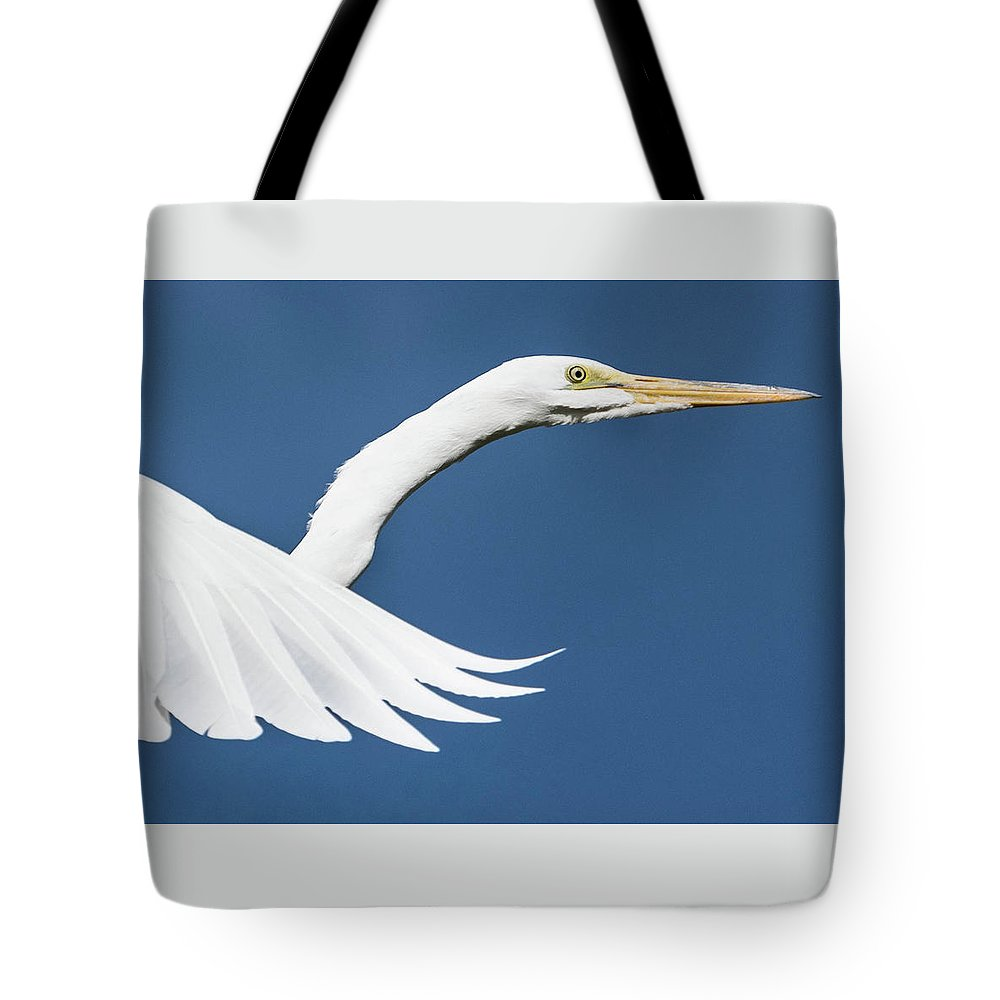 Portrait Tote Bag featuring the photograph Portrait Of A Great Egret by Tran Boelsterli