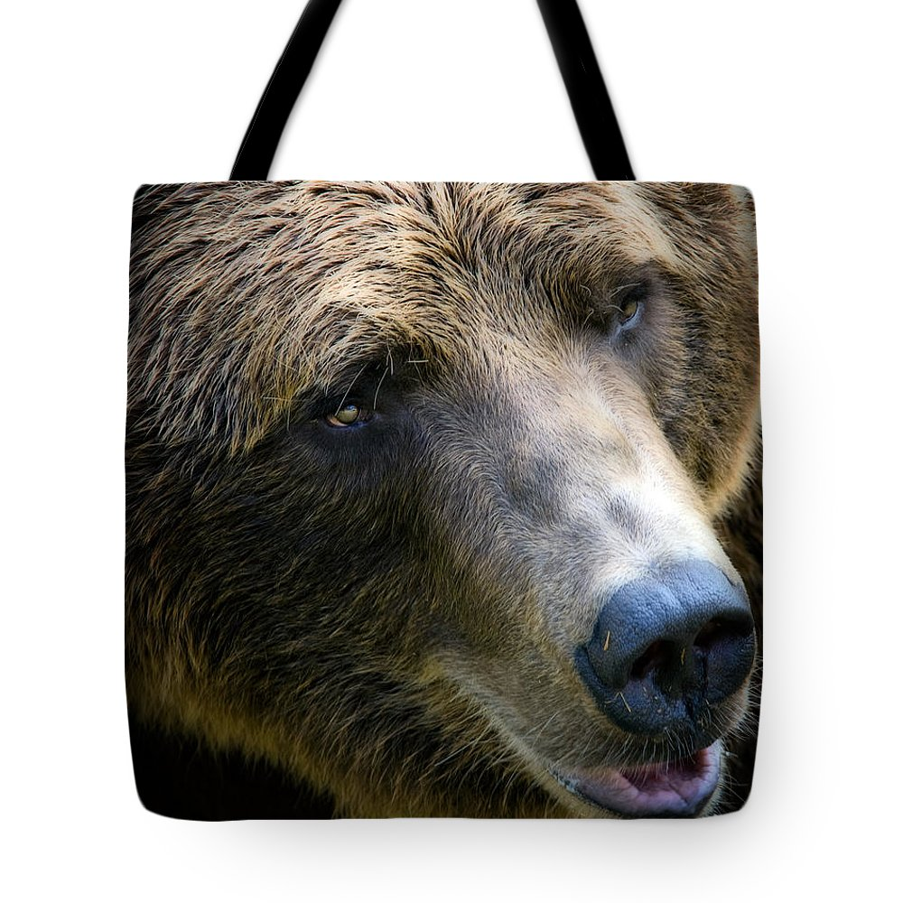 Grizzly Tote Bag featuring the photograph Portrait Of A Grizzly by Lana Trussell