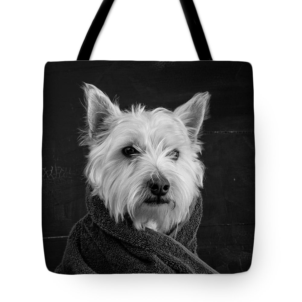 Westie Lifestyle Products