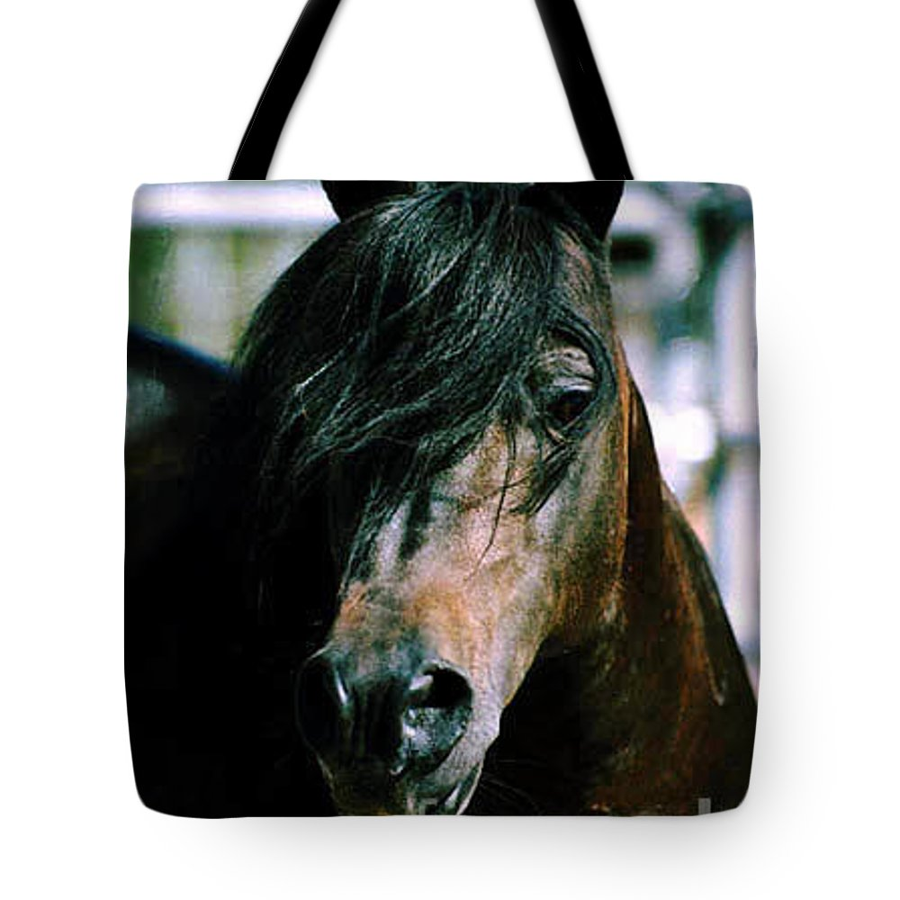 Horse Tote Bag featuring the photograph Portrait Of His Majesty - The King by Kathy McClure