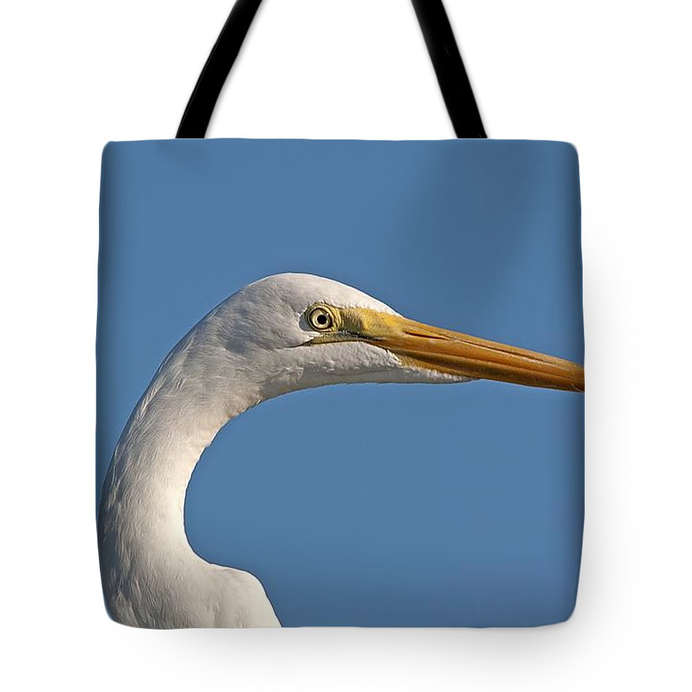 Wildlife Tote Bag featuring the photograph Posing Heron by Kenneth Albin