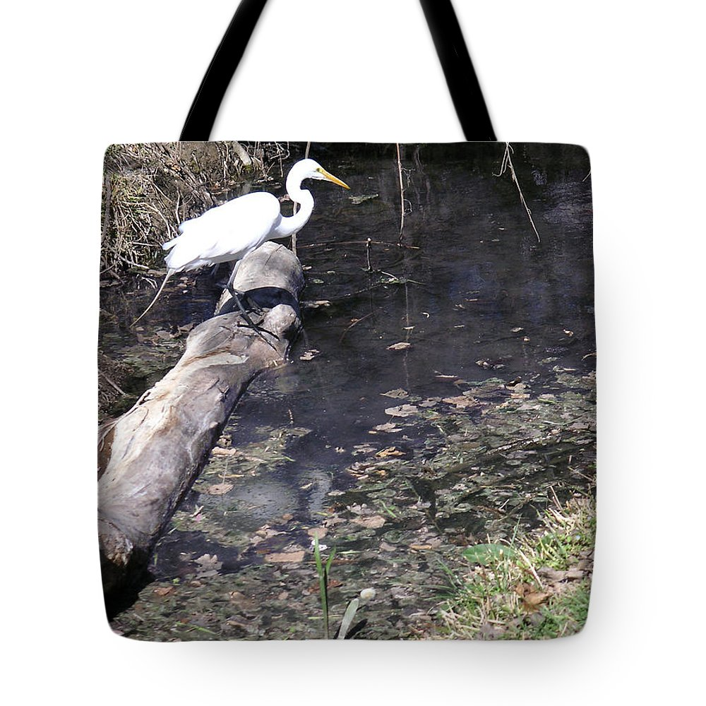 Nature Tote Bag featuring the photograph Positioning For The Jump by Lucyna A M Green