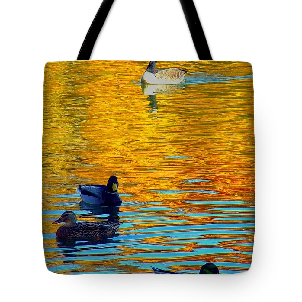 Ducks Malard Lake Gold Canada Geese Blue Tote Bag featuring the photograph Possibilities by Jack Diamond