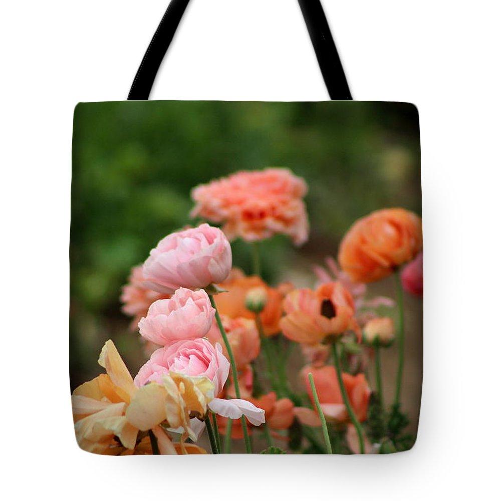 Powder Pink Ranunculus Tote Bag featuring the photograph Powder Pink and Salmon Ranunculus by Colleen Cornelius