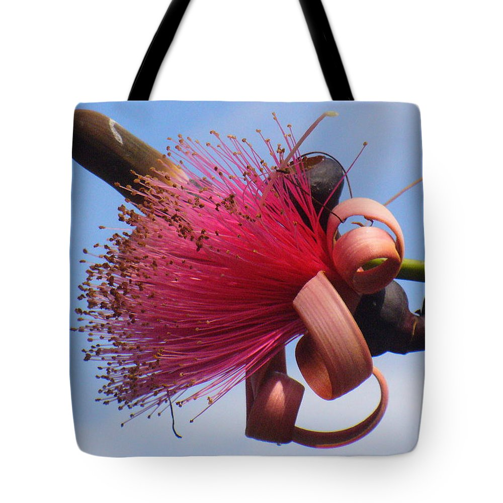 Plants Tote Bag featuring the photograph Powder Puff Blossom by Peggy King