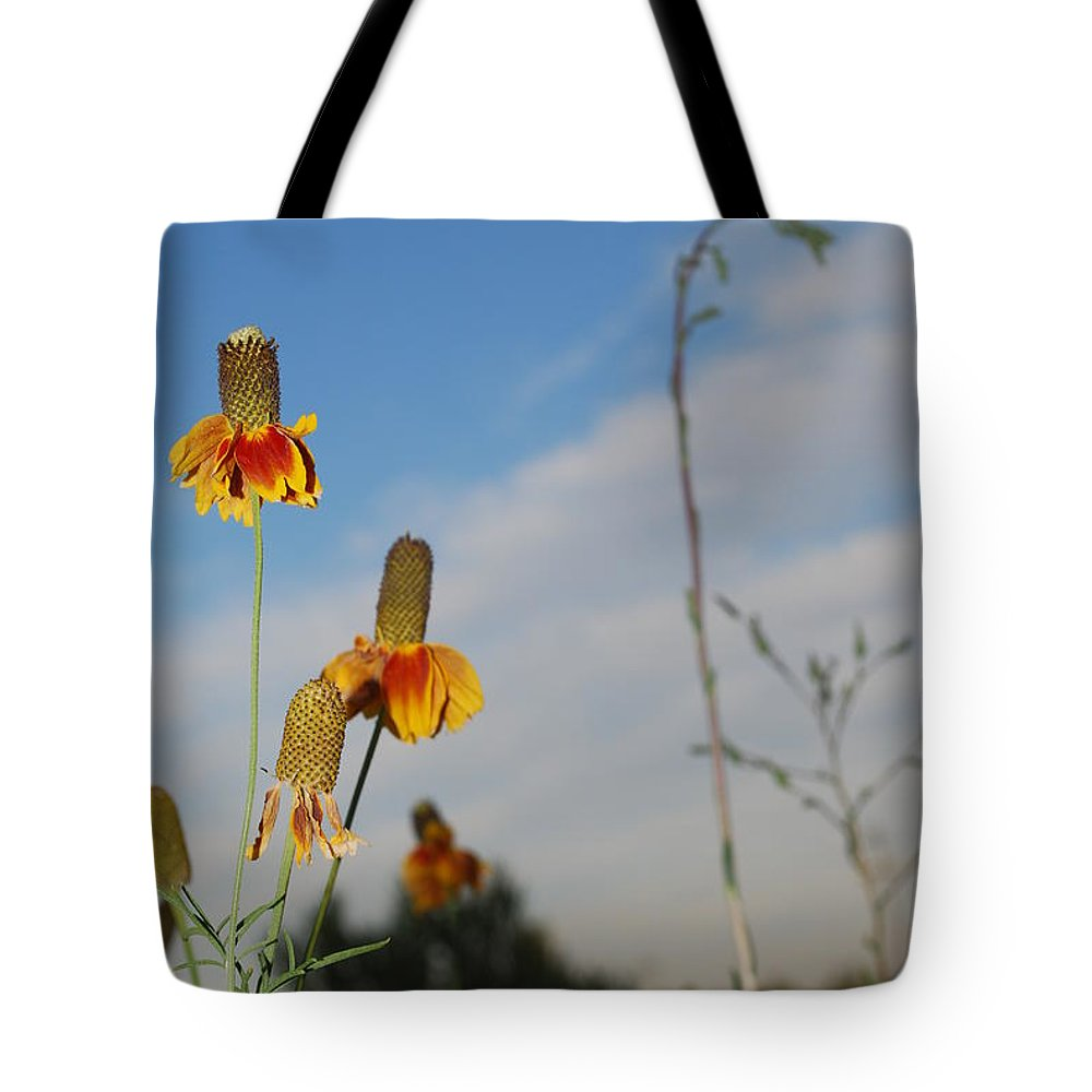 Tote Bag featuring the photograph Prairie Cone Flowers Against Blue Sky Vertical Number Two by Heather Kirk