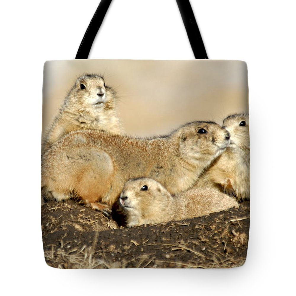 Custer State Park Tote Bag featuring the photograph Prairie Dog Family Portrait by Larry Ricker