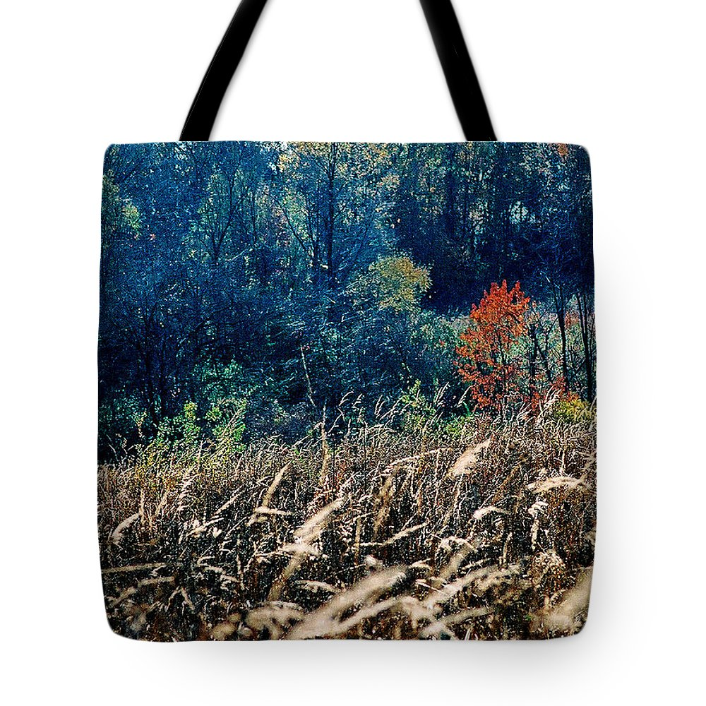Landscape Tote Bag featuring the photograph Prairie Edge by Steve Karol
