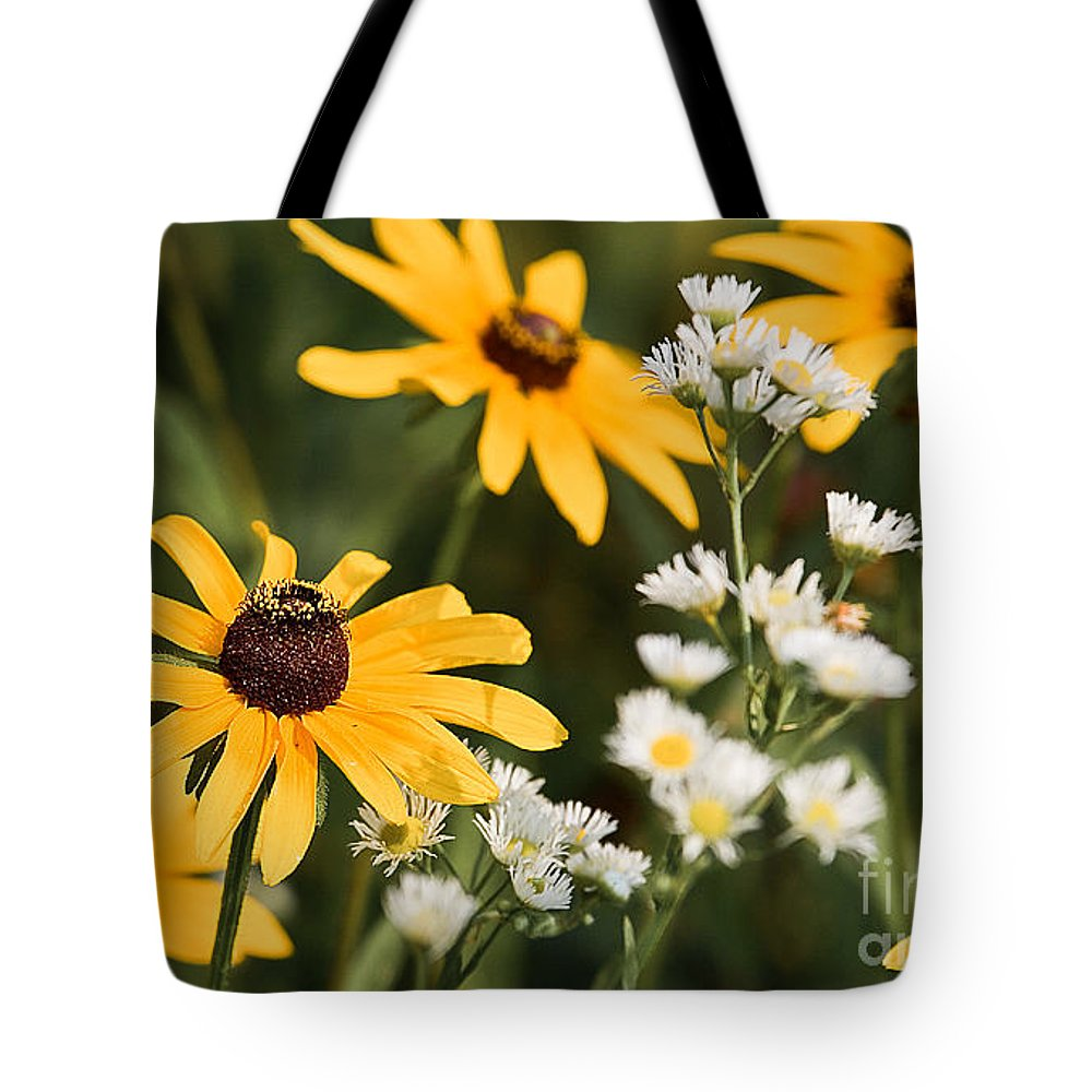 Daisy Tote Bag featuring the photograph Prairie Sceen by Mark Braun